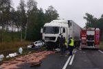 Wpadek na drodze krajowej nr 94